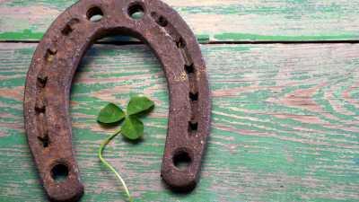 image: clover and horseshoe